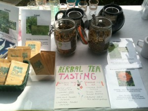 Herbal stall at fair
