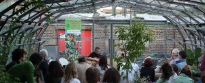Blues in the greenhouse